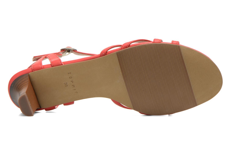 Sandales et nu-pieds Esprit Birkin Sandal Rouge vue haut