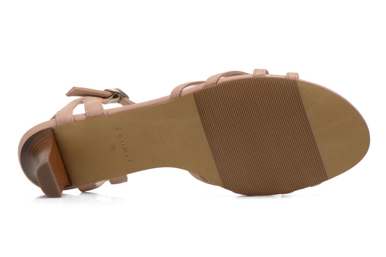 Sandales et nu-pieds Esprit Birkin Sandal Beige vue haut