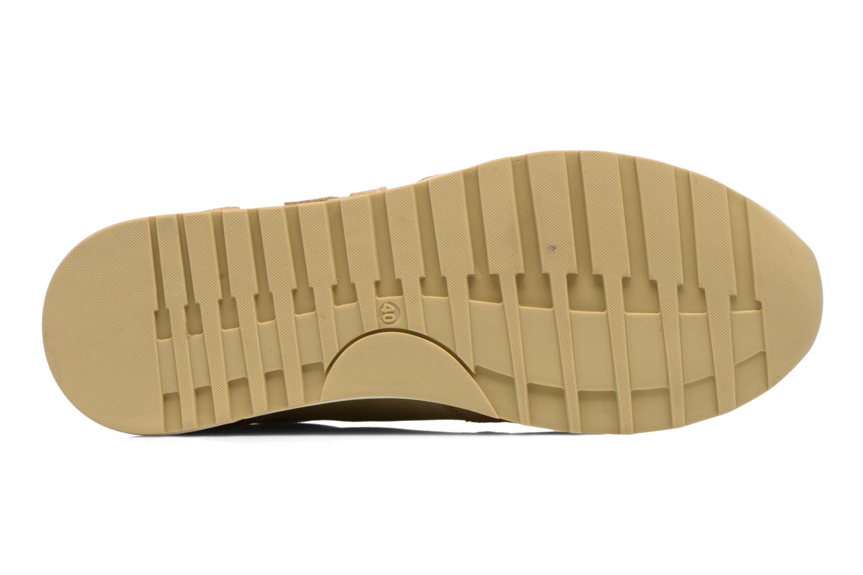 Sneaker Kickers NIELO beige ansicht von oben