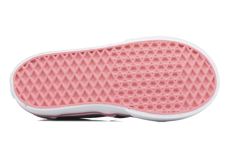 Sneaker Vans Atwood V BB grau ansicht von oben