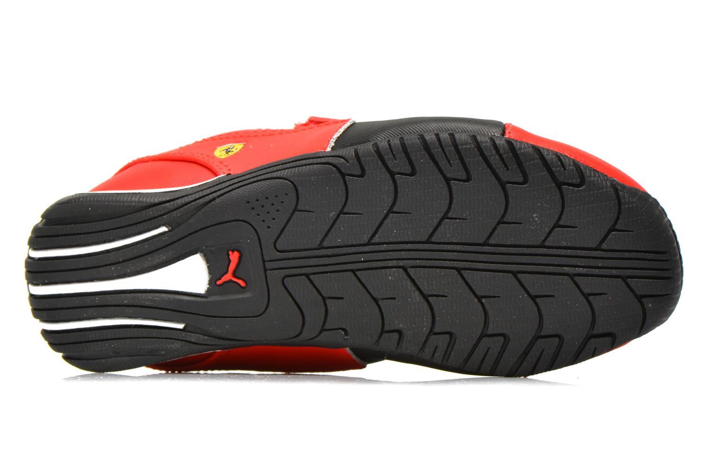 Sneaker Puma Kds Drift Cat5 L Sf V rot ansicht von oben