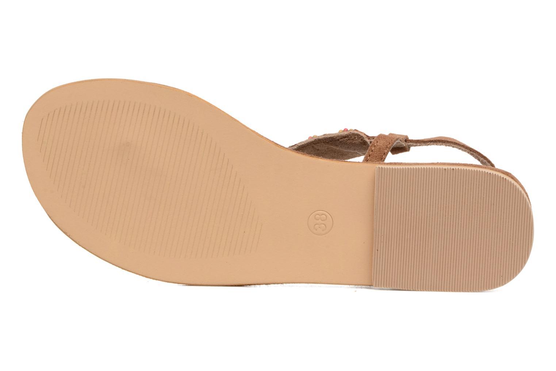 Sandali e scarpe aperte Coolway Miami Marrone immagine dall'alto