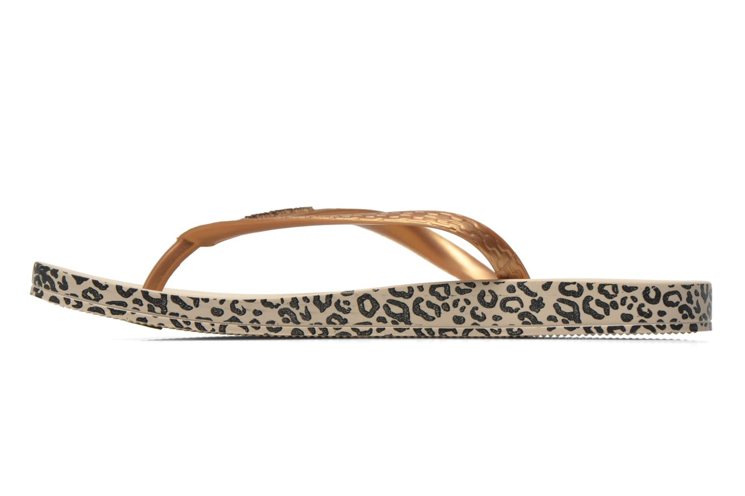 Flip flops Ipanema Anatomica Soft Bronze and Gold front view