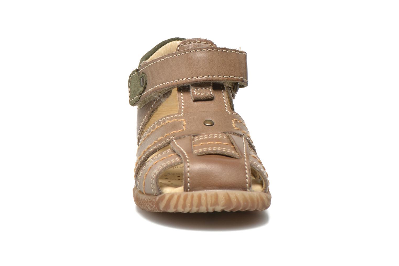 Sandales et nu-pieds Primigi Lars Gris vue portées chaussures