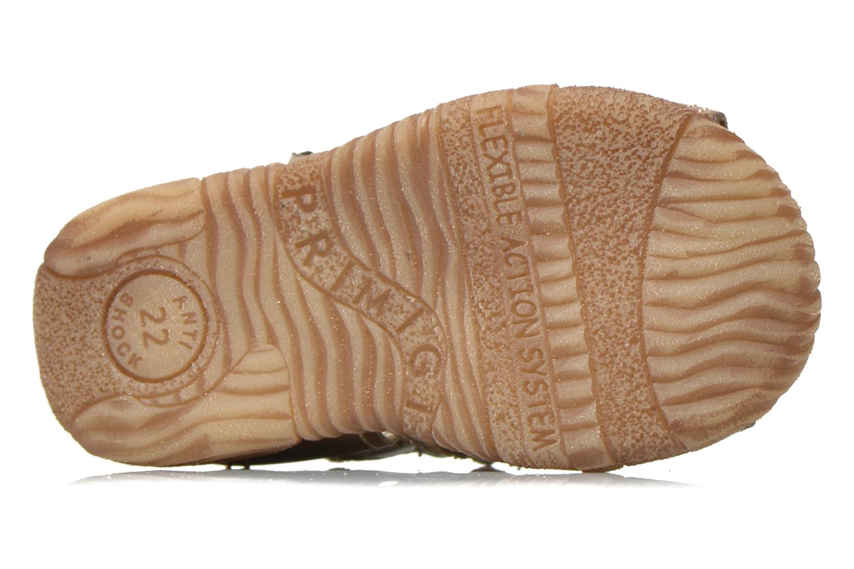 Sandales et nu-pieds Primigi Lars Gris vue haut