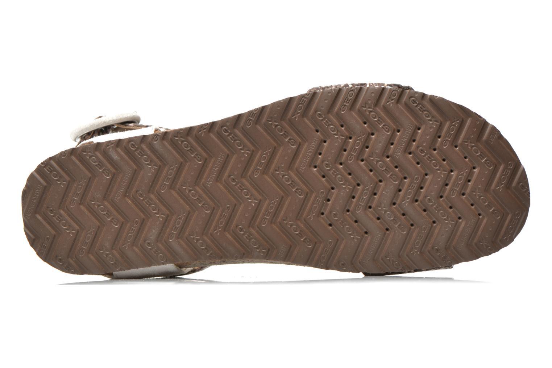 Sandales et nu-pieds Geox D ZAYNA E D622BE Gris vue haut
