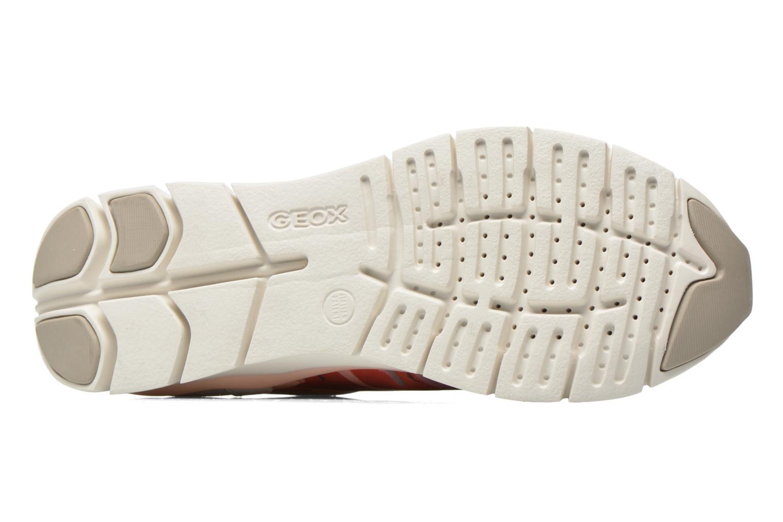 Sneaker Geox D SUKIE E D62F2E mehrfarbig ansicht von oben