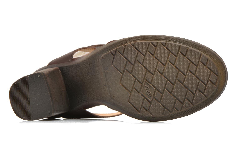 Sandales et nu-pieds P-L-D-M By Palladium Gaya Frl Marron vue haut