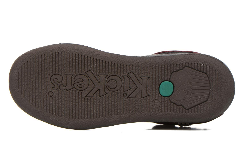 Chaussures à lacets Kickers Camaiou Violet vue haut