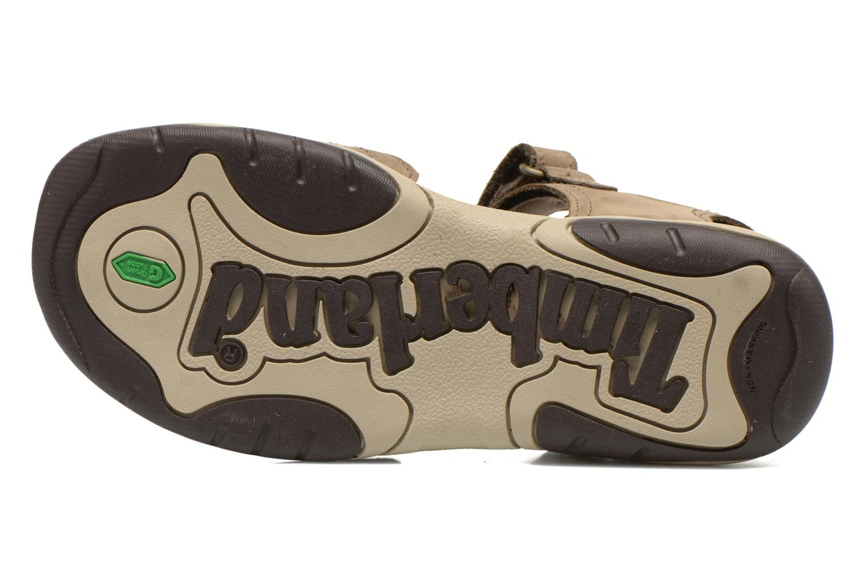 Sandali e scarpe aperte Timberland Oak Bluffs Leather 2Strap Marrone immagine dall'alto