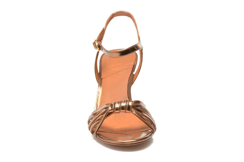 Salsa Bronze