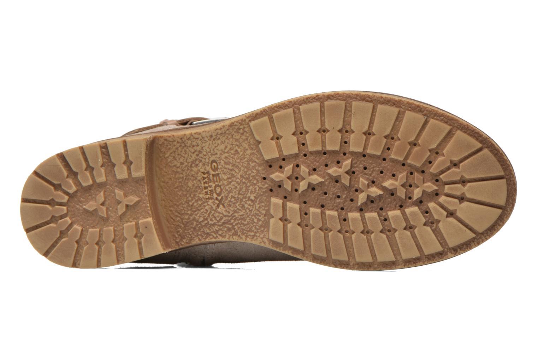 Stiefeletten & Boots Geox D New Virna D5251G beige ansicht von oben