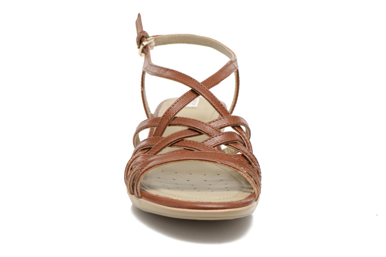 Sandali e scarpe aperte Geox D New Coral D52S3A Marrone modello indossato