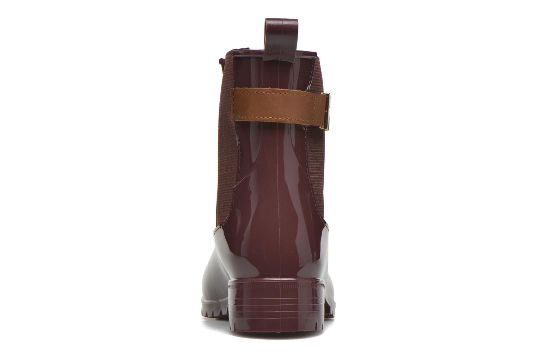 Boots en enkellaarsjes Tommy Hilfiger OXLEY 7R Bordeaux rechts