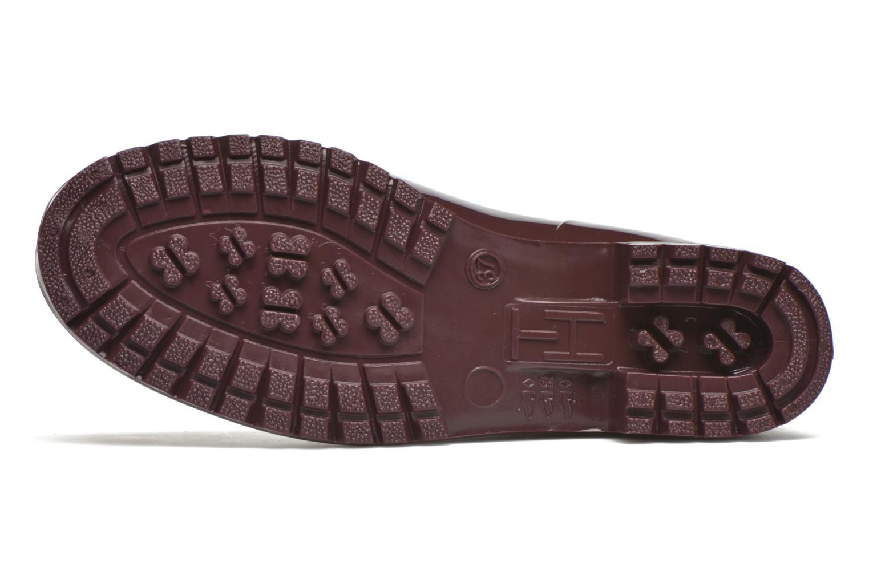 Stiefeletten & Boots Tommy Hilfiger OXLEY 7R weinrot ansicht von oben