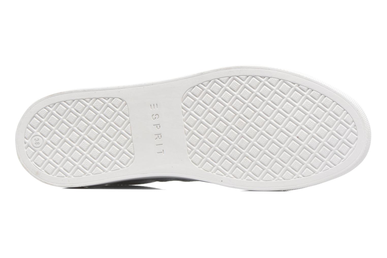 Sneaker Esprit Lizette Lace Up weiß ansicht von oben