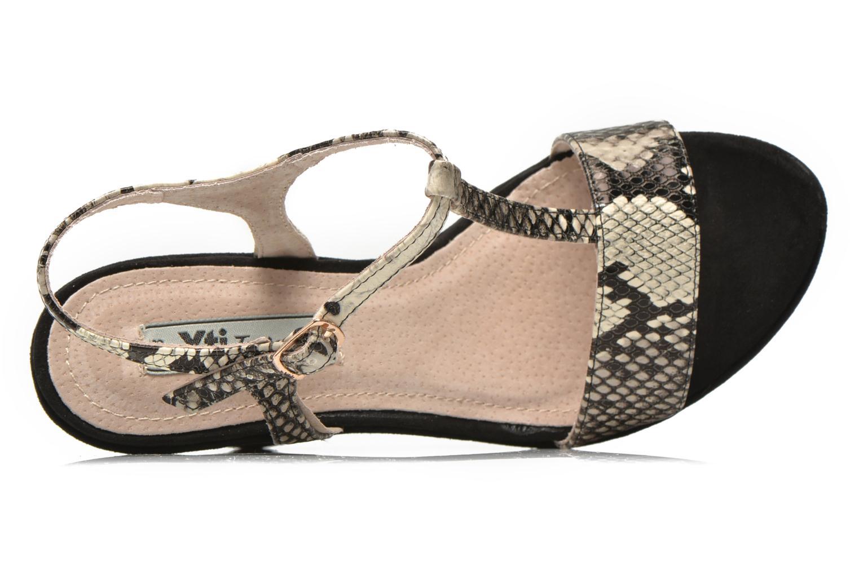 Antigua 29715 Snake