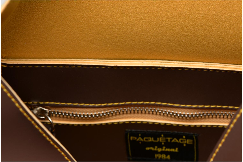 Handbags Paquetage Seau bicolore Brown back view