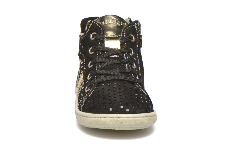 Bottines et boots Primigi Mhila Noir vue portées chaussures