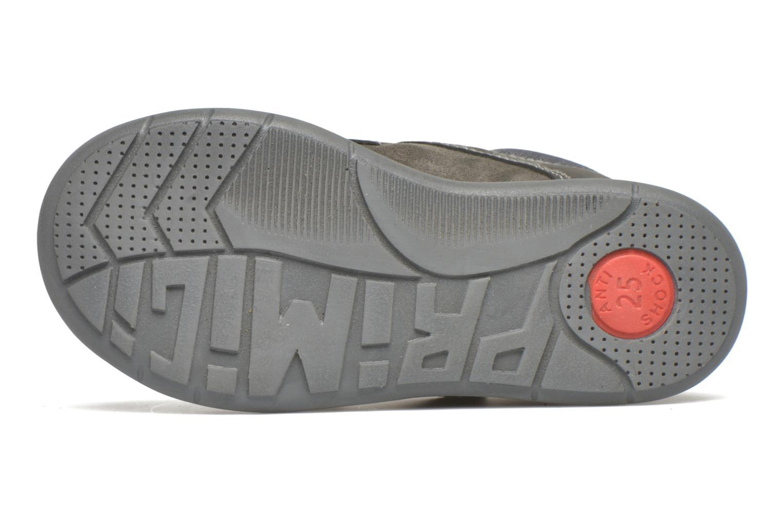 Zapatos con velcro Primigi Tristan Gris vista de arriba
