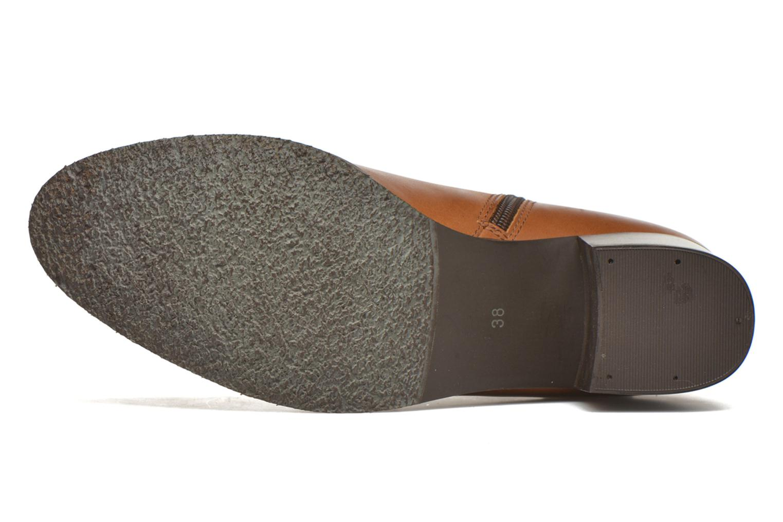 Stiefeletten & Boots PintoDiBlu Bruna braun ansicht von oben