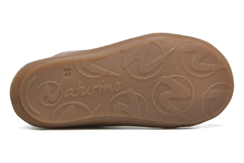 Camilo 3972 Warm mirtillo