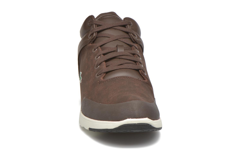 Tarru-Light 416 1 Dark Brown