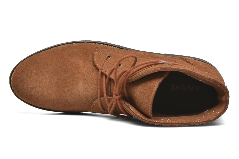 Boots en enkellaarsjes André Myriam Bruin links