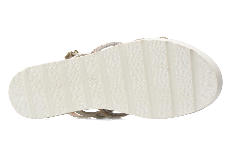 Hicar 885 Multi Blanc