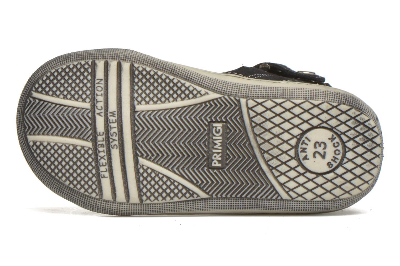 Sneakers Primigi Alexia Azzurro immagine dall'alto