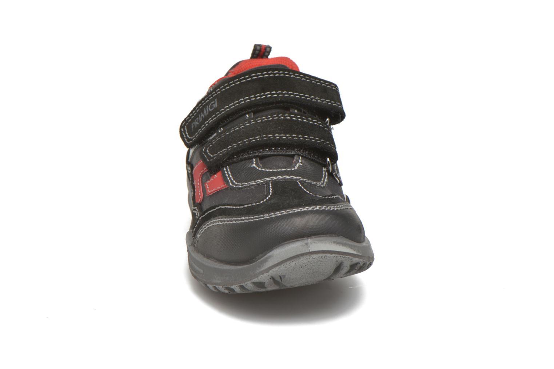 Baskets Primigi Spenk Noir vue portées chaussures