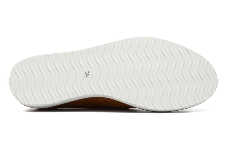 Chaussures à lacets Ippon Vintage Andy Pics Marron vue haut