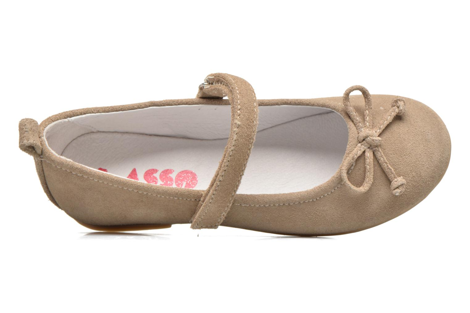 Ballet pumps ASSO Camelia Brown view from the left