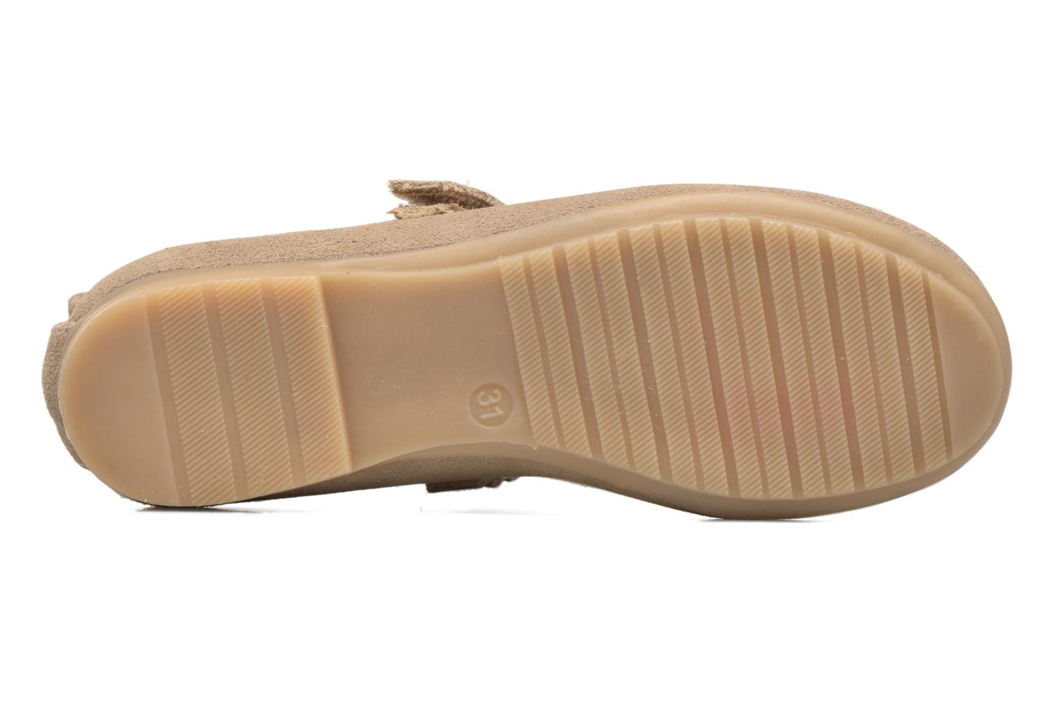Ballet pumps ASSO Camelia Brown view from above