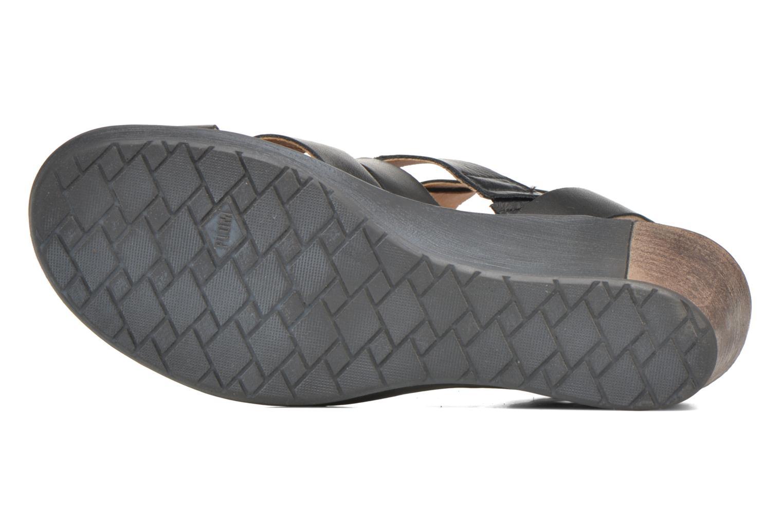 Sandales et nu-pieds P-L-D-M By Palladium Shannon Vgt Noir vue haut