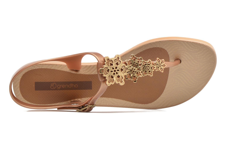 Sandalias Grendha Romantic Sandal Fem Marrón vista lateral izquierda