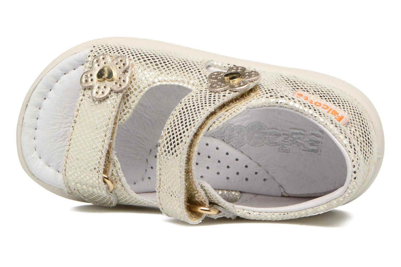 Sandales et nu-pieds Naturino Agata 1570 Or et bronze vue gauche