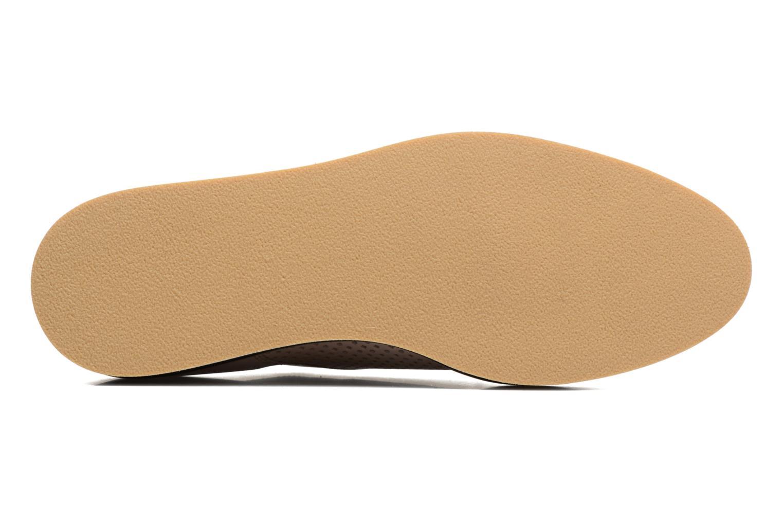 Sugar Shoegar #7 Alfa nude perfo