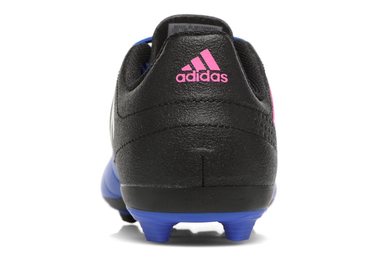 Zapatillas de deporte Adidas Performance Ace 17.4 Fxg J Negro vista lateral derecha