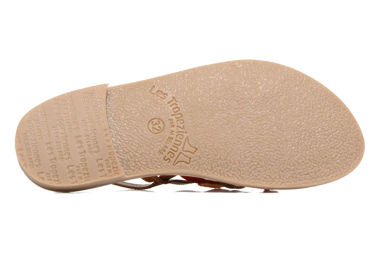 Sandali e scarpe aperte Les Tropéziennes par M Belarbi Mango Marrone immagine dall'alto