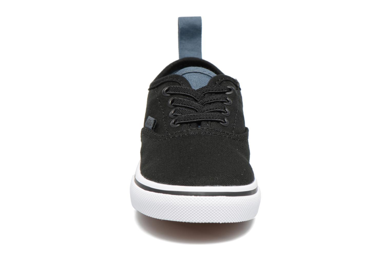 Trainers Vans Authentic Elastic Lace BB Black model view