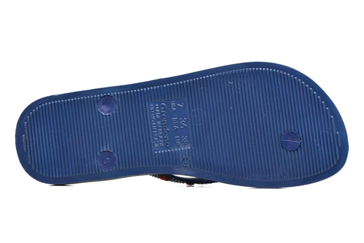 Flip flops Ipanema Anatomic Lovely VII Blue view from above