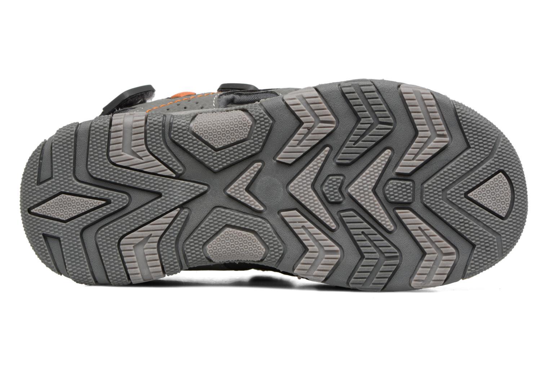 Sandales et nu-pieds Canguro Pablo Sandals Gris vue haut
