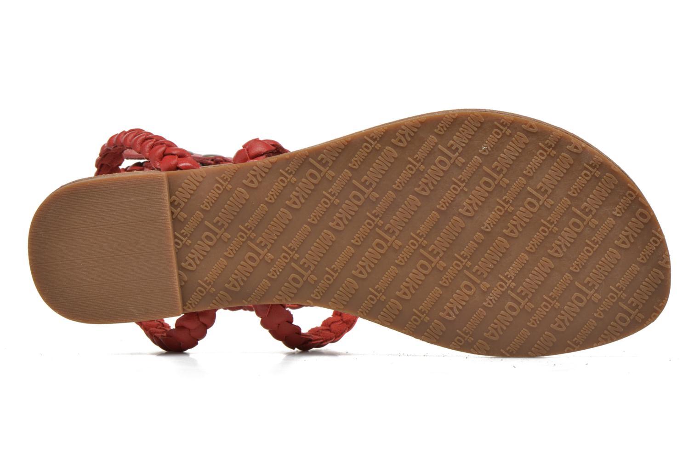 Sandales et nu-pieds Minnetonka Liberty Thong Rouge vue haut