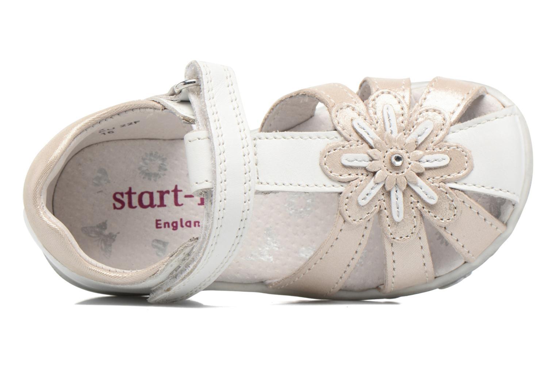 Sandales et nu-pieds Start Rite Primrose Blanc vue gauche