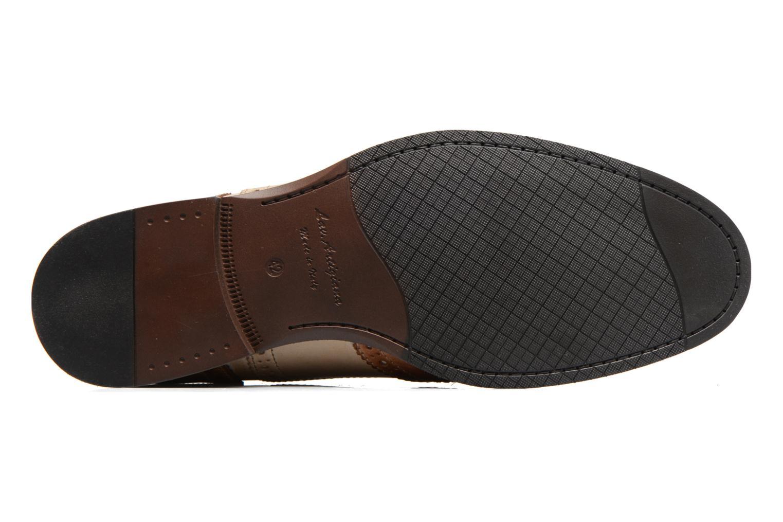 Chaussures à lacets Marvin&Co Noylow Marron vue haut