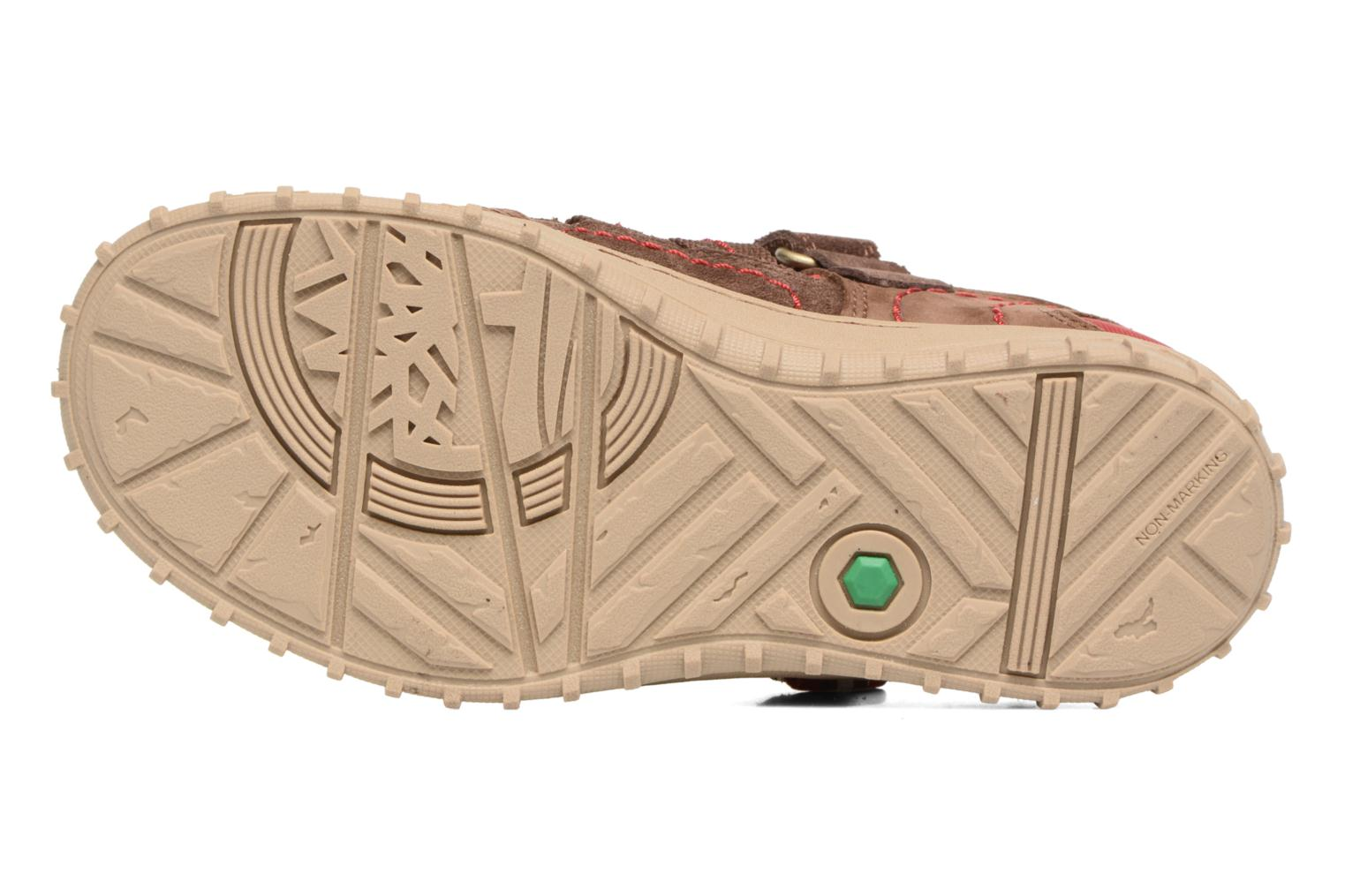 Sandals Timberland Castleton Sporty Fisherma Brown view from above