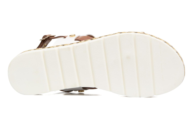 Ypi White comb