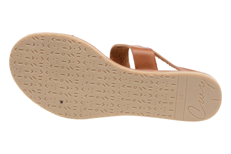 Sandales et nu-pieds Coolway Monda Marron vue haut