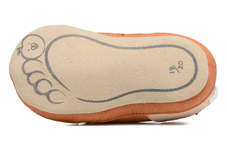 Pantofole Shoo Pom Chou Fox Marrone immagine dall'alto